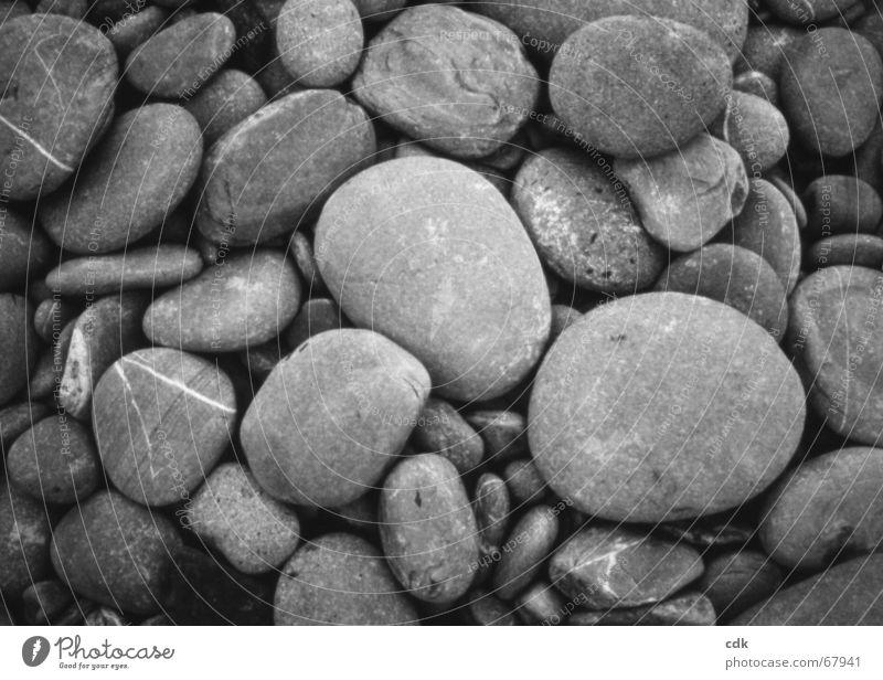 steinig Kieselsteine Anhäufung mehrere Haufen grau Strand Kieselstrand groß klein rund Verschiedenheit ähnlich Sammlung Stein flußtaler viele Schwarzweißfoto