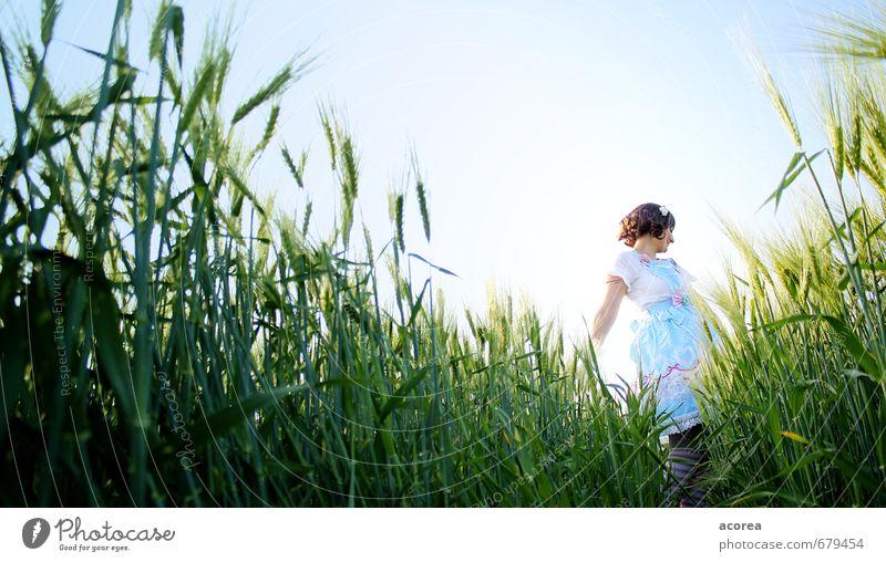 Tanz im Feld Mensch Junge Frau Jugendliche 1 18-30 Jahre Erwachsene Natur Himmel Sommer Schönes Wetter Pflanze Kleid Strümpfe brünett Locken genießen Spielen