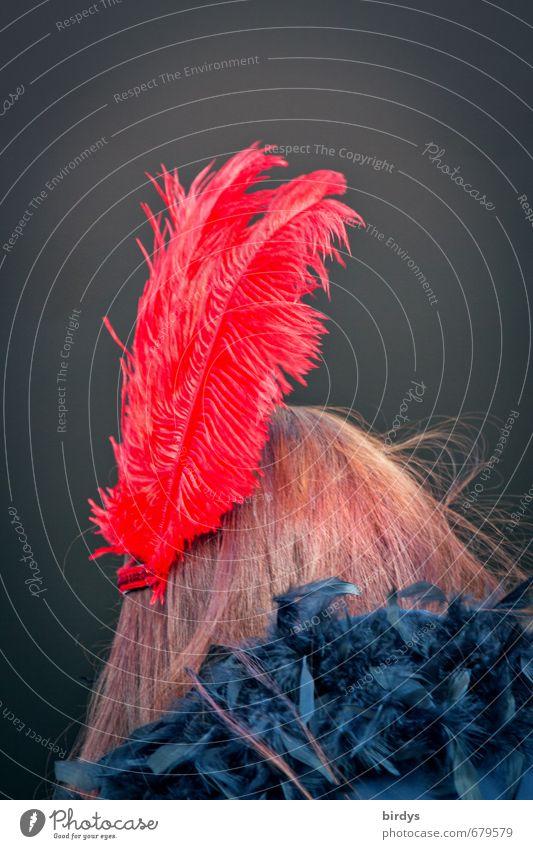 rausgeputzt Mensch Jugendliche schön rot Junge Frau schwarz feminin Haare & Frisuren Stil außergewöhnlich Kopf braun Mode Design leuchten ästhetisch