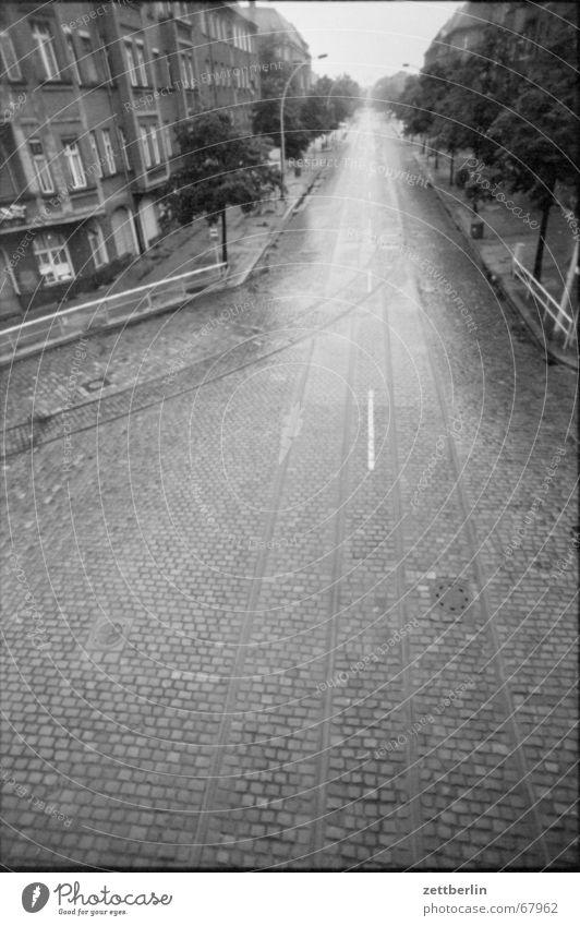 Sommerende Regen Kopfsteinpflaster nass leer Straßenbahn Gleise glänzend