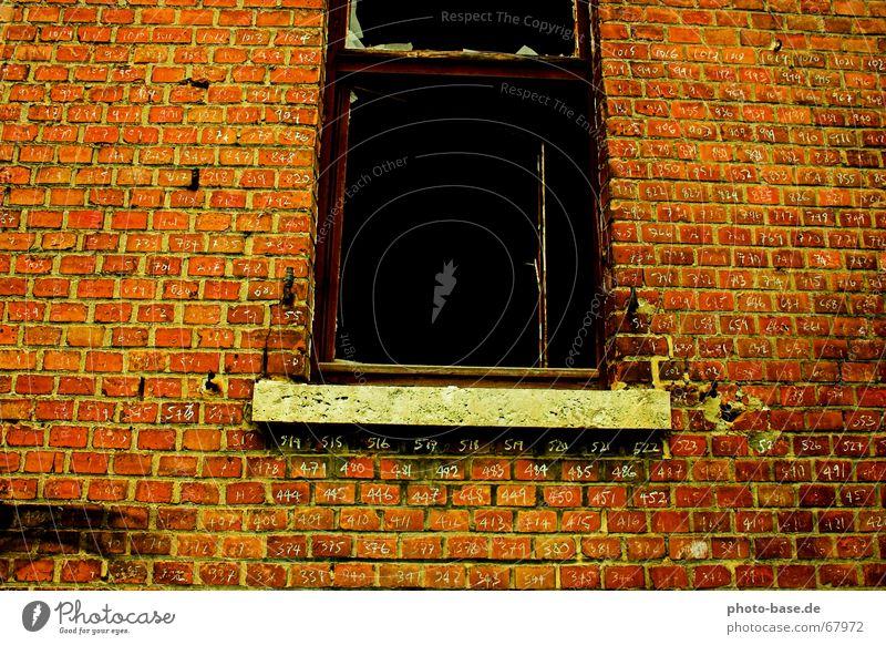 Wieviele Tage muss ich noch warten rot Fenster Backstein Typographie Justizvollzugsanstalt ziegelrot