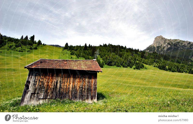 Hütten-Tour II Blume grün Sommer Ferien & Urlaub & Reisen ruhig Wolken Wald Erholung Wiese Berge u. Gebirge Wetter Gipfel Hütte Blumenwiese