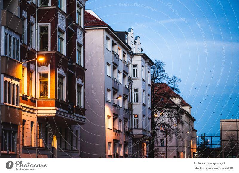 Abendsstimmung Himmel Stadt ruhig Haus Fenster Straße Gebäude Vogel Fassade Straßenbeleuchtung Wohnhaus Leipzig Häuserzeile Erker verschlafen