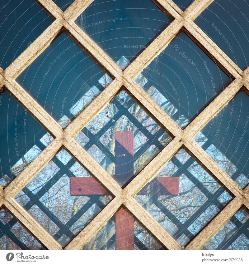 Kreuzungen Baum Fenster Frühling Holz Religion & Glaube außergewöhnlich ästhetisch Schönes Wetter Kirche Kreativität einzigartig Zeichen Christliches Kreuz