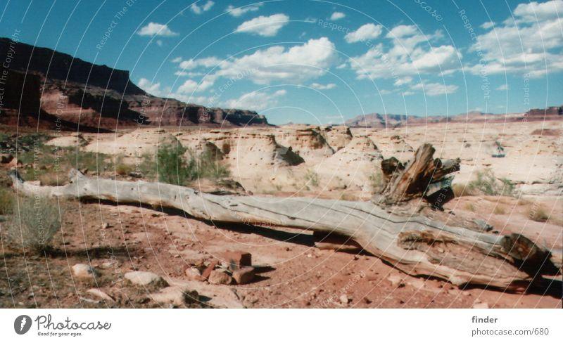 Baum Himmel Gras Berge u. Gebirge Sand Felsen Steppe