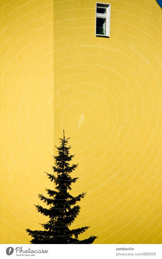 Himmel rechts oben Architektur Baustelle Gebäude Berlin Deutschland Frühling Sonne Haus Wand Mauer gelb Tanne Weihnachtsbaum Fenster Fassade Dachgiebel
