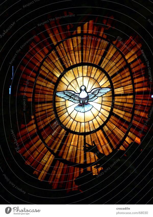 friendensflieger Beleuchtung Glas fliegen rund Frieden Vatikan Symbole & Metaphern Taube Rom Katholizismus Petersdom