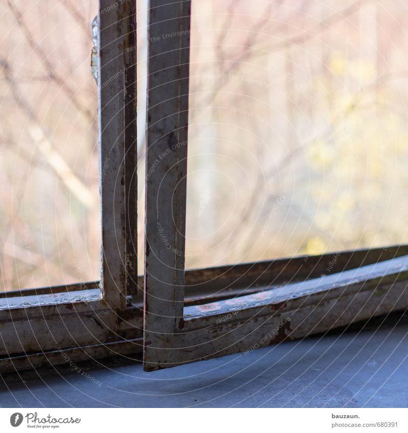 ut ruhrgebiet | auf. Umwelt Natur Baum Garten Park Industrieanlage Fabrik Ruine Bauwerk Gebäude Fenster Metall alt eckig Farbfoto Außenaufnahme Innenaufnahme