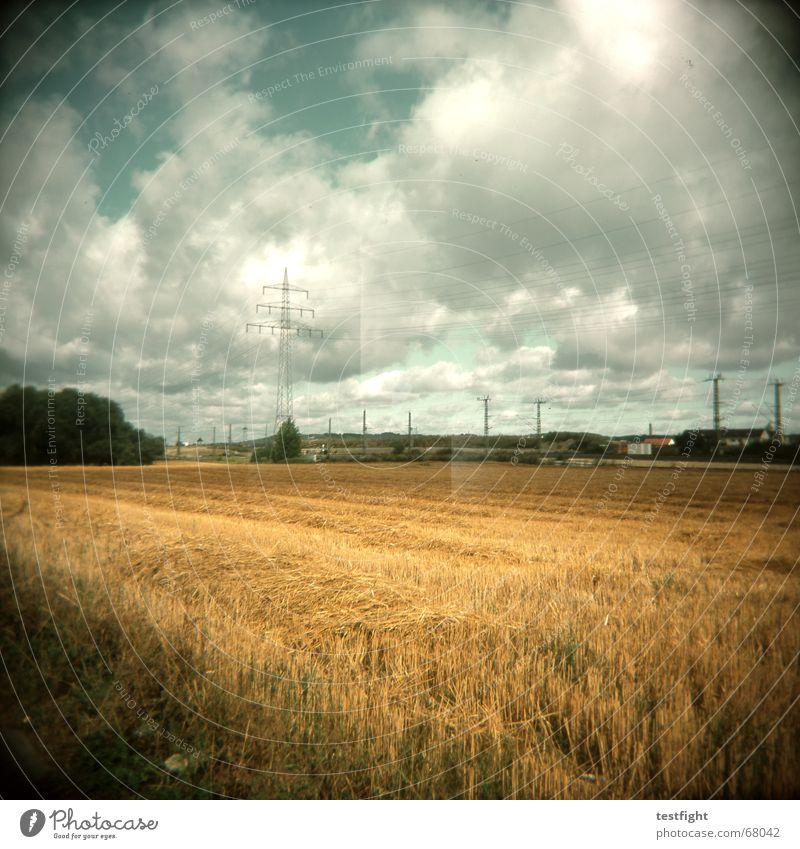 under the clouds Weizenfeld Roggen Holga under the bushes under the stars field of wheat woiza Landschaft landscape