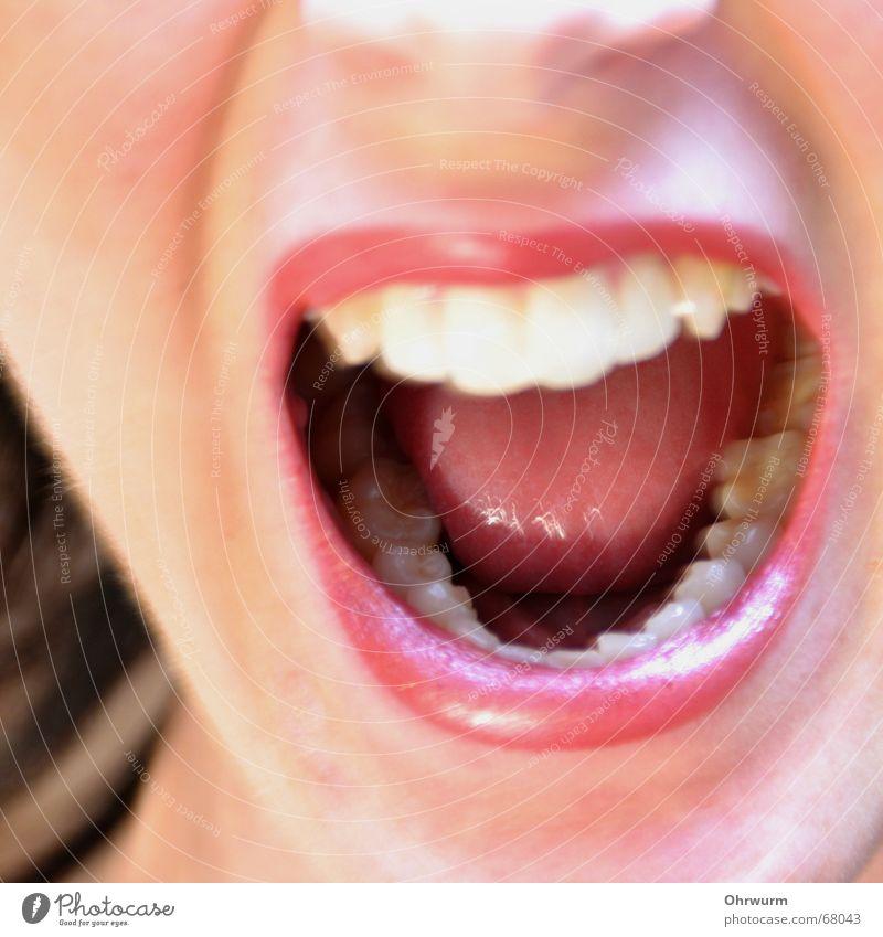 Sag mal A Wut laut Lippen glänzend rot Lippenstift weiß Frau singen Verzweiflung Aggression Innenaufnahme stur Zahnarzt schreien Ärger Gesundheit Gesicht lachen