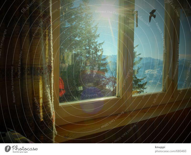 sunshine Wohlgefühl Zufriedenheit Ausflug Sonne Schnee Winterurlaub Berge u. Gebirge Haus Innenarchitektur Dekoration & Verzierung Raum Fenster Natur