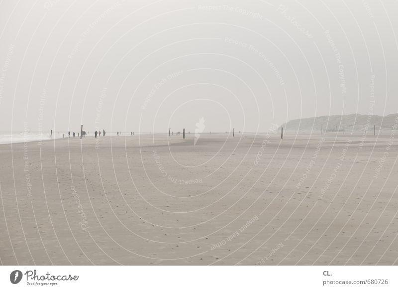 wandertag Mensch Himmel Natur Ferien & Urlaub & Reisen Meer Landschaft ruhig Wolken Ferne Strand Umwelt Küste Freiheit Sand Horizont Menschengruppe