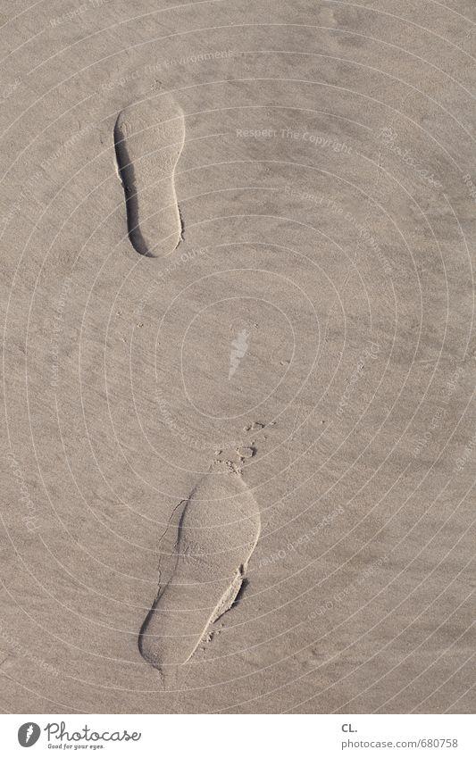 spuren Ferien & Urlaub & Reisen Tourismus Ausflug Abenteuer Freiheit Insel wandern Umwelt Natur Sand Küste Seeufer Flussufer Strand Nordsee gehen Beginn