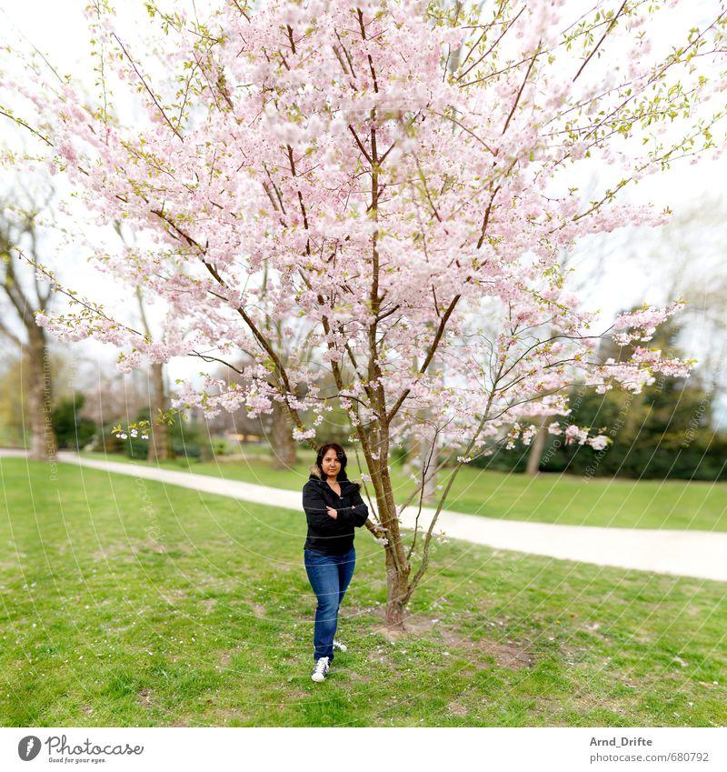 ::200:: Kirschblütentraum feminin Frau Erwachsene 1 Mensch 30-45 Jahre Pflanze Schönes Wetter Baum Kirschbaum Park Wiese frisch grün rosa Zufriedenheit brenizer