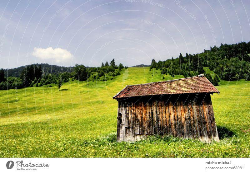 Hütten-Tour III Wiese Sommer Wald Wolken Gipfel Blumenwiese ruhig Ferien & Urlaub & Reisen Erholung grün Berge u. Gebirge Wetter
