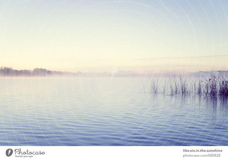 und meine seele spannte.... Himmel Natur Ferien & Urlaub & Reisen Sommer Erholung Einsamkeit Landschaft ruhig Ferne Umwelt Herbst Frühling Gras See Horizont