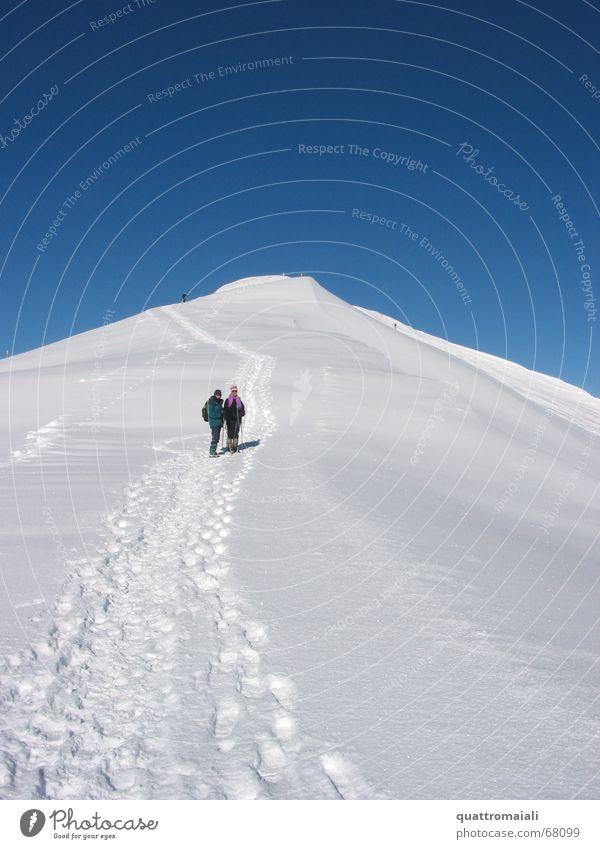 Gipfelwanderung Winter kalt Schnee Berge u. Gebirge Eis wandern maskulin Spaziergang Schweiz Spuren Schneespur Grindelwald Schneewandern