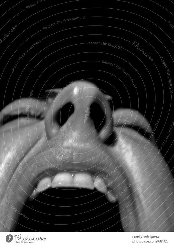 mute #2 Schwarzweißfoto Innenaufnahme Studioaufnahme Textfreiraum links Textfreiraum rechts Textfreiraum oben Nacht Kunstlicht Kontrast Zentralperspektive