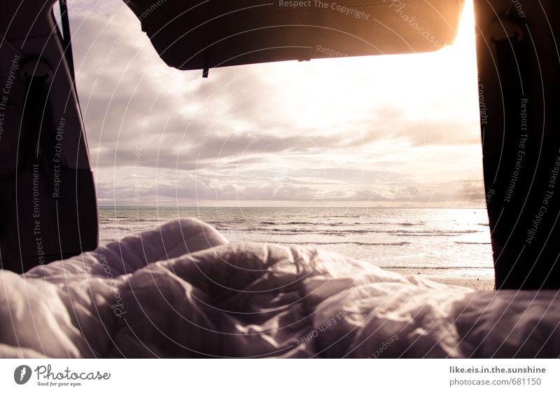 schatz! wach auf! da war ein wal! Wellness Leben harmonisch Wohlgefühl Zufriedenheit Sinnesorgane Erholung Freizeit & Hobby Angeln Ferien & Urlaub & Reisen