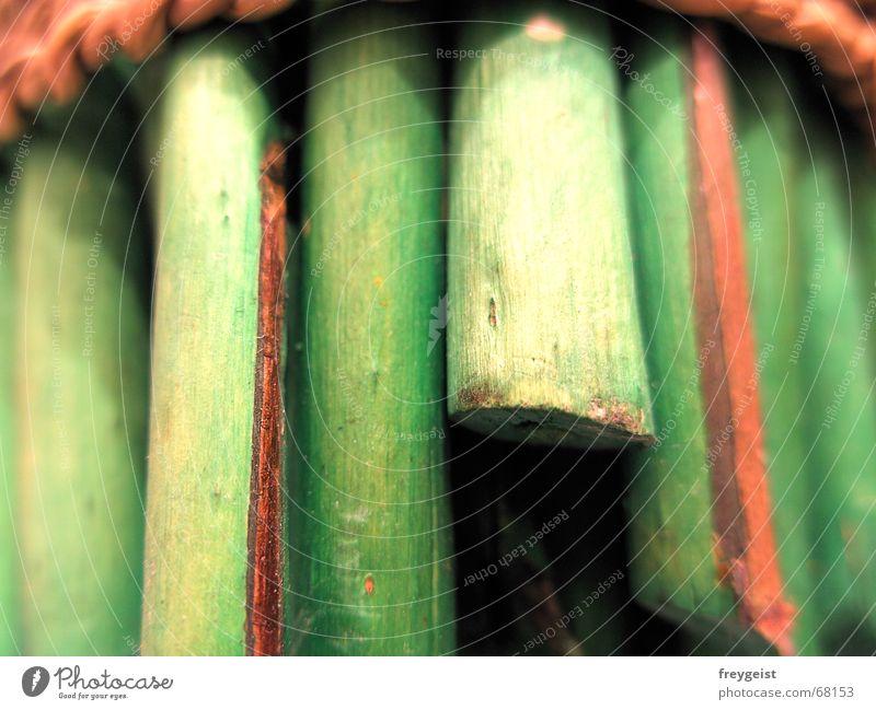 Green Wood 1st grün Holzmehl Bündel braun Stil leer Stengel vertikal Weide Natur Schilfrohr Lücke Loch hole Seil rope Makroaufnahme teeth Farbe vertical