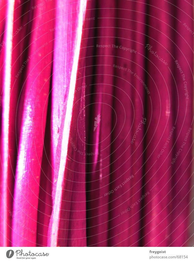 Pink Wood Natur Farbe Stil Holz rosa hoch Stengel Schnur Eisenrohr Weide vertikal Bündel intensiv knallig Holzmehl