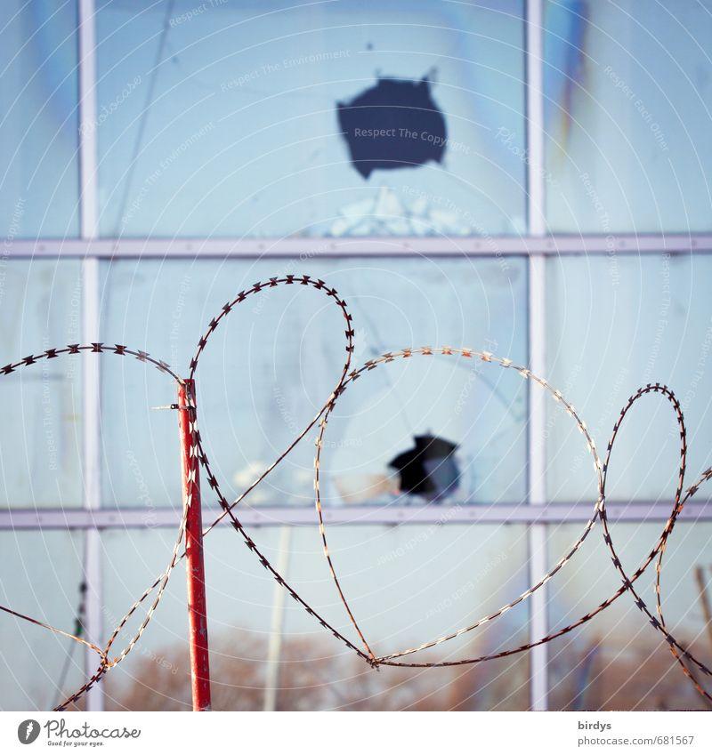 Sperrgebiet Fenster Glasfassade Stacheldraht authentisch bedrohlich rebellisch stachelig blau rot Schutz Wut Aggression rebellieren Angst Ausgrenzung Barriere