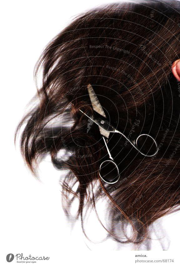 schnipp schnapp...haare ab.... weiß schwarz dunkel Haare & Frisuren hell braun Ohr Schere Mensch Hautfarbe