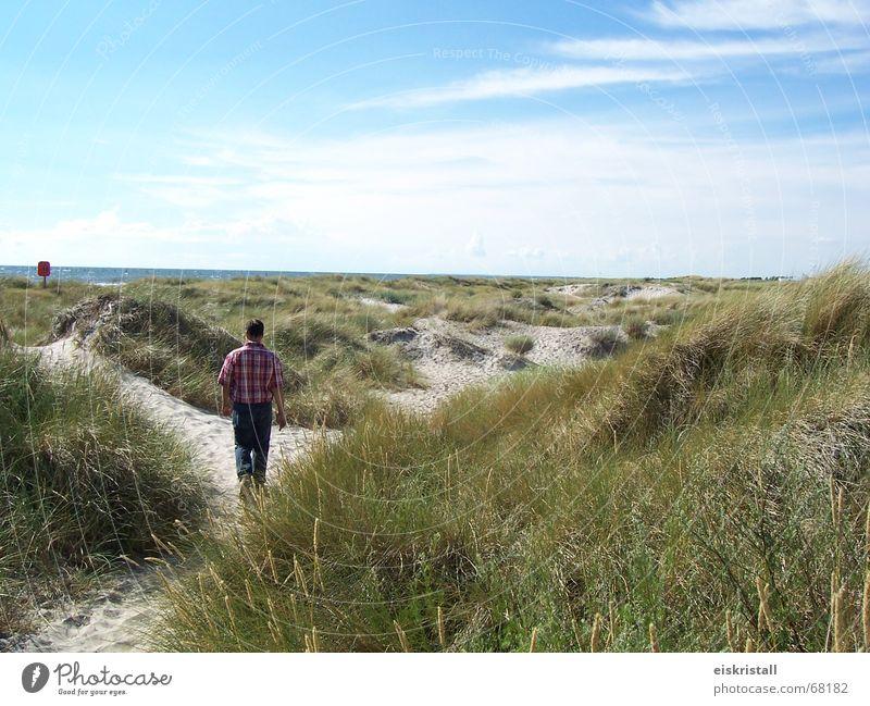 Dänischer Strand Himmel Mann blau Meer Landschaft Wolken Gras Sand Stranddüne Sandstrand Blauer Himmel Dänemark