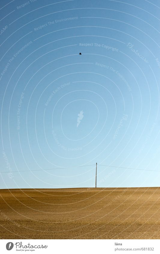 leere um mich Mensch Himmel Natur Ferien & Urlaub & Reisen blau Einsamkeit Landschaft ruhig Ferne Umwelt braun Horizont Vogel Feld Erde Energiewirtschaft