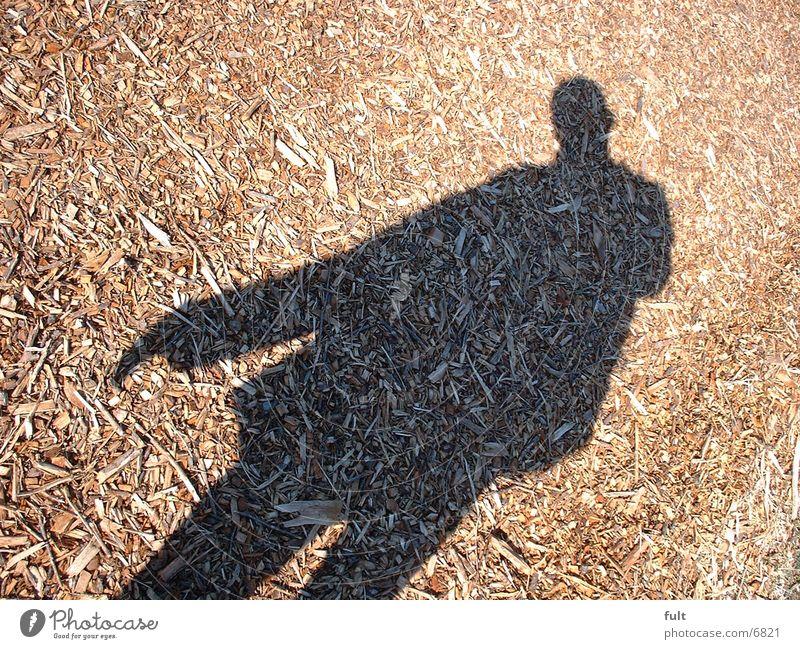 Schatten Mensch Mann Holz Wege & Pfade