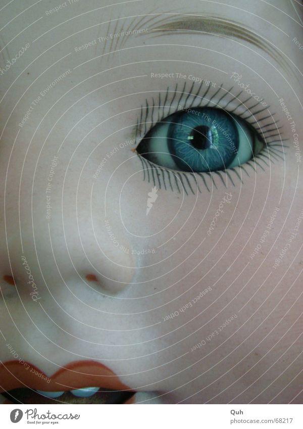 blauer AugenBlick Gesicht Kopf Mund Baby Nase streichen Kindheit Geschirr Puppe Wange falsch antik Wimpern Augenbraue