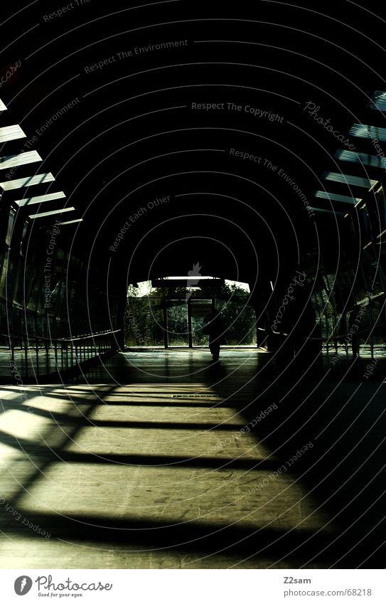 always straightforward Tunnel Tunnelblick Licht Sonnenstrahlen Holz gehen Physik Muster light Brücke holzweg Wärme lines Linie