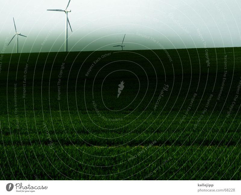 drei musketiere Himmel Arbeit & Erwerbstätigkeit Gras Landschaft Wind 3 Elektrizität Technik & Technologie Rasen Gastronomie Windkraftanlage Mai Propeller Bildbearbeitung