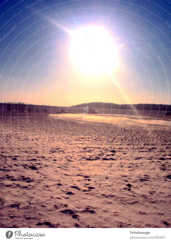 Sonne im Schnee Außenaufnahme Freundlichkeit Landschaft freiheit die unerreichbar wirkt hell Wärme