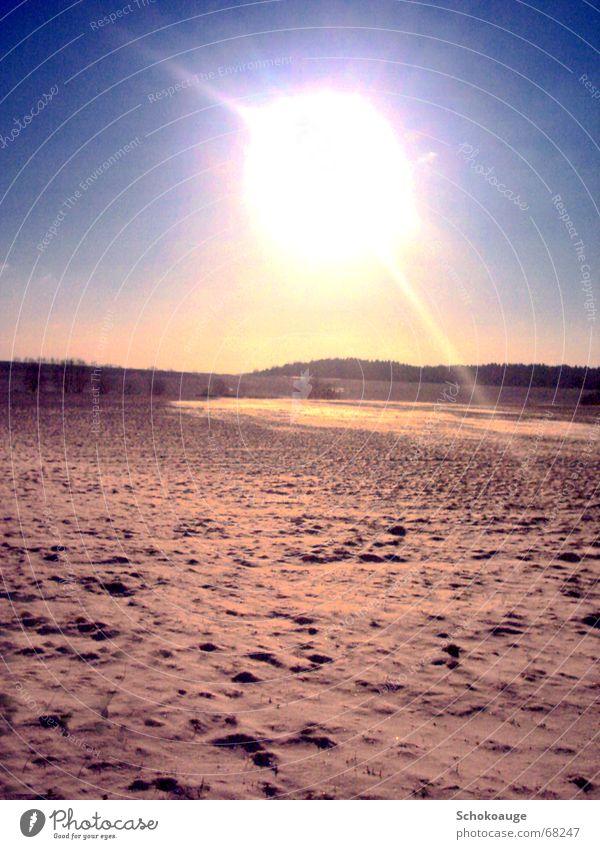 Sonne im Schnee Wärme Landschaft hell Freundlichkeit