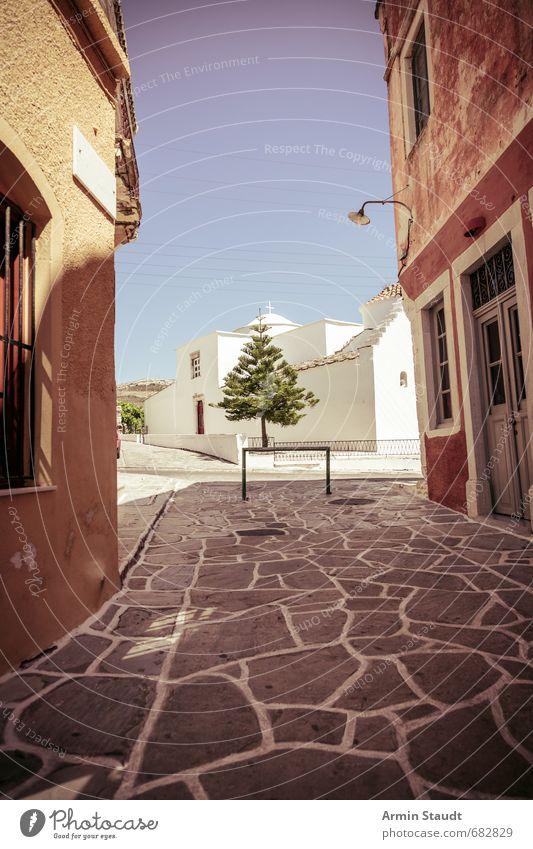 Mediterrane Szene mit exotischem Nadelbaum Ferien & Urlaub & Reisen alt Sommer Baum Einsamkeit ruhig Haus Umwelt Wand Straße Mauer Religion & Glaube Stimmung