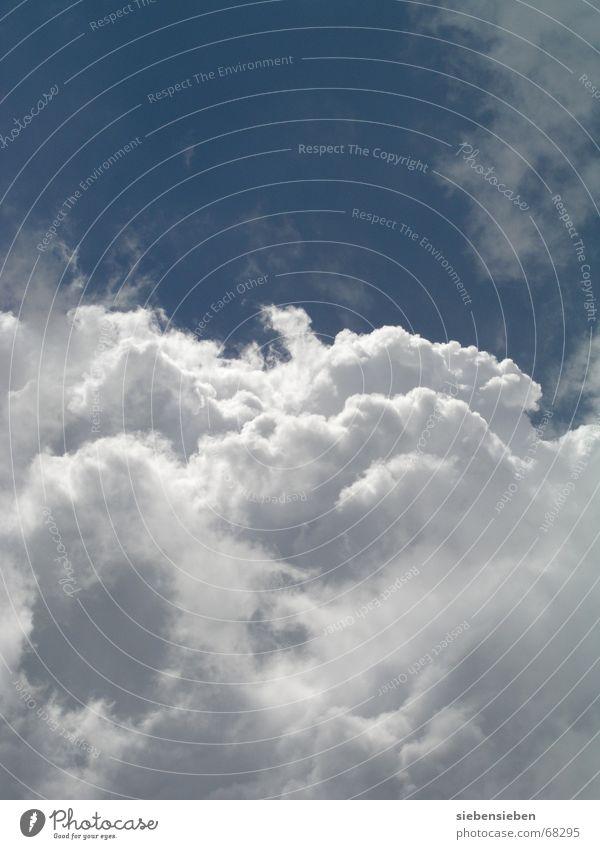 himmelweit Himmel blau Wolken Herbst Freiheit Glück grau Wetter fliegen Klima Paradies himmlisch Selbstständigkeit schlechtes Wetter prächtig Wolkendecke