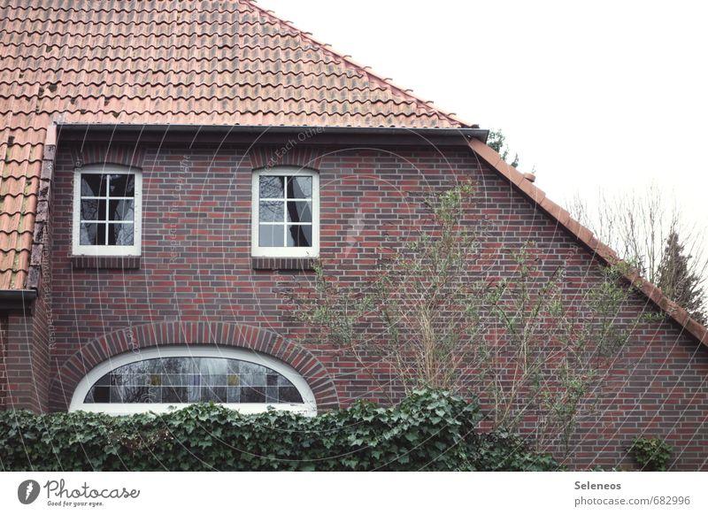 sad house Häusliches Leben Wohnung Haus Garten Gesicht Wolkenloser Himmel Pflanze Baum Efeu Dorf Kleinstadt Stadt Mauer Wand Fassade Fenster Dach Dachrinne