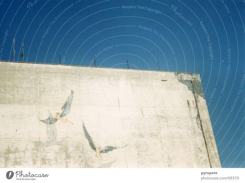 Engelchen flieg ... alt Himmel blau Ferien & Urlaub & Reisen Wand Gebäude Fassade Gemälde Griechenland Kreta zerbröckelt Heraklion