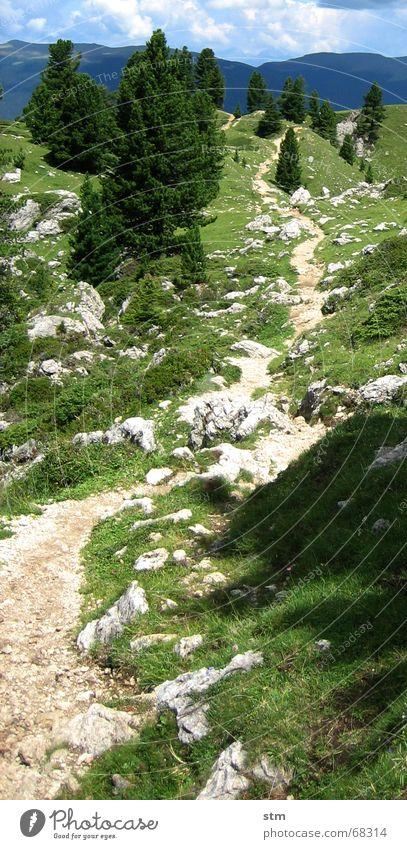 roadmovie 06 Himmel Baum Ferne Straße Gras Berge u. Gebirge träumen Stein Wege & Pfade gehen groß leer Unendlichkeit hart schwer langsam