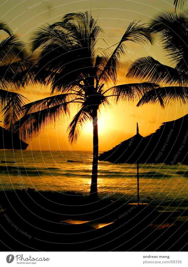 Sonnenaufgang am Indischen Ozean Wasser Meer Erholung Wellen Treppe Dach Sonnenuntergang Liege Sonnenschirm Palme Abenddämmerung