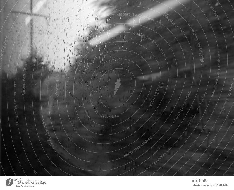 Gedankenzug Frau Wasser schwarz Ferne feminin Freiheit grau Traurigkeit Denken Regen offen nass Geschwindigkeit Eisenbahn Trauer Sehnsucht