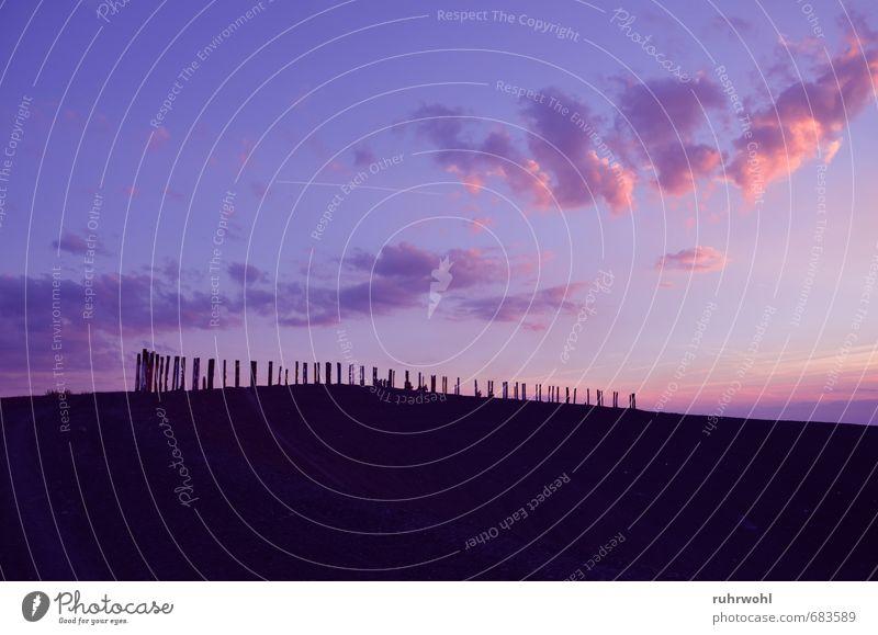 Haldenglück Sommer Sonne Landschaft Erde Sand Luft Himmel Wolken Sonnenaufgang Sonnenuntergang Hügel Wahrzeichen Erholung leuchten violett rosa schwarz Gefühle