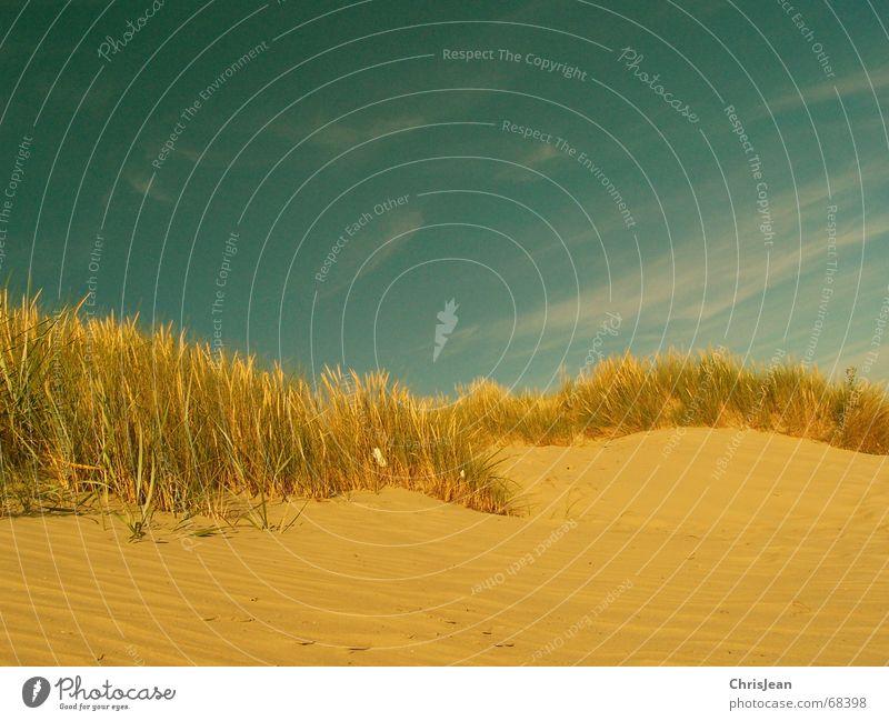 Düne Strand bearbeitet Borkum Stranddüne Sand sandgras strandgras Himmel Schutz Nordsee