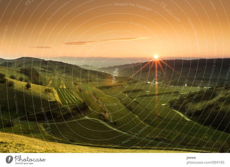 Seelenheil Landschaft Himmel Wolken Horizont Sonnenaufgang Sonnenuntergang Sonnenlicht Sommer Schönes Wetter Wiese Feld Berge u. Gebirge schön trocken grün