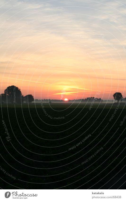 Morgenstimmung Sonne Landschaft Graffiti Stimmung Feld Nebel Beginn Romantik Tau mystisch aufwachen Nebelfeld