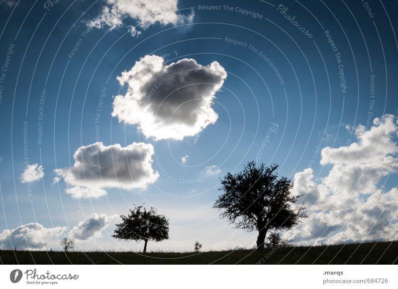 Schönwetterfront Ausflug Umwelt Natur Landschaft Himmel Wolken Sommer Klima Schönes Wetter Baum Wiese Erholung einfach natürlich schön Stimmung Zufriedenheit