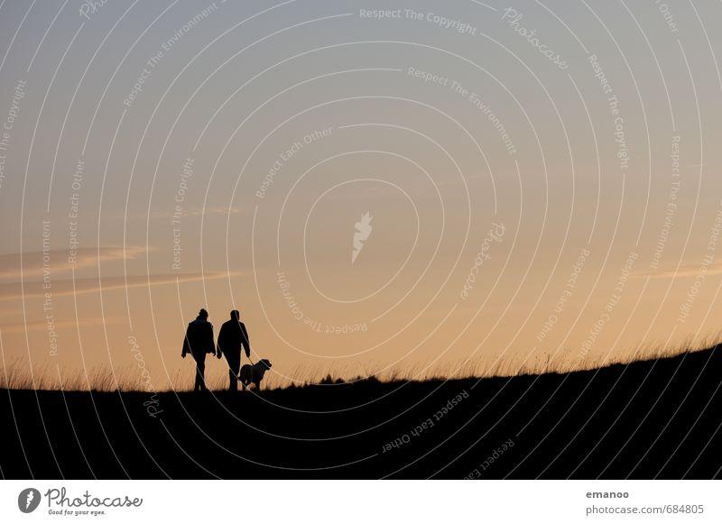 Gassi gehen Hund Mensch Frau Himmel Ferien & Urlaub & Reisen Mann Sommer Erholung Landschaft Tier Erwachsene Berge u. Gebirge Gras Freiheit gehen Horizont