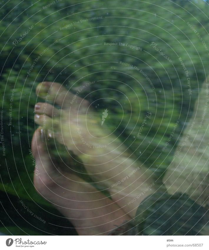 roadmovie 07 fahren Eisenbahn Geschwindigkeit grün Zehen Reflexion & Spiegelung träumen Denken Gedanke Ferien & Urlaub & Reisen Pflanze Fuß reflektion