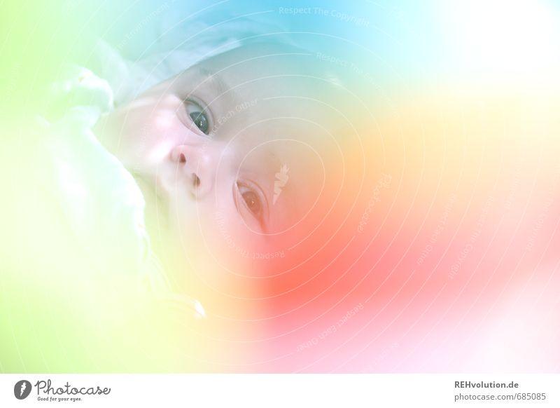 Mein Baby gehört zu mir. Ist das klar? Mensch Kind Kopf 1 0-12 Monate Familie & Verwandtschaft Nachkommen Farbfoto mehrfarbig Innenaufnahme Licht Unschärfe